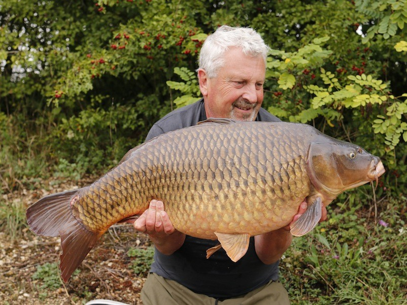 Lovely dark common for Clive