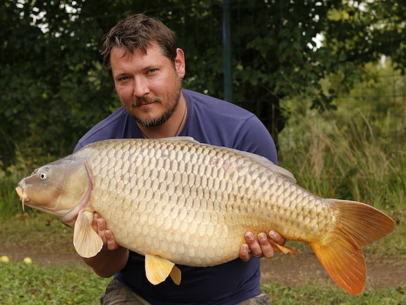 Busy Busy boy - Garth with a nice common