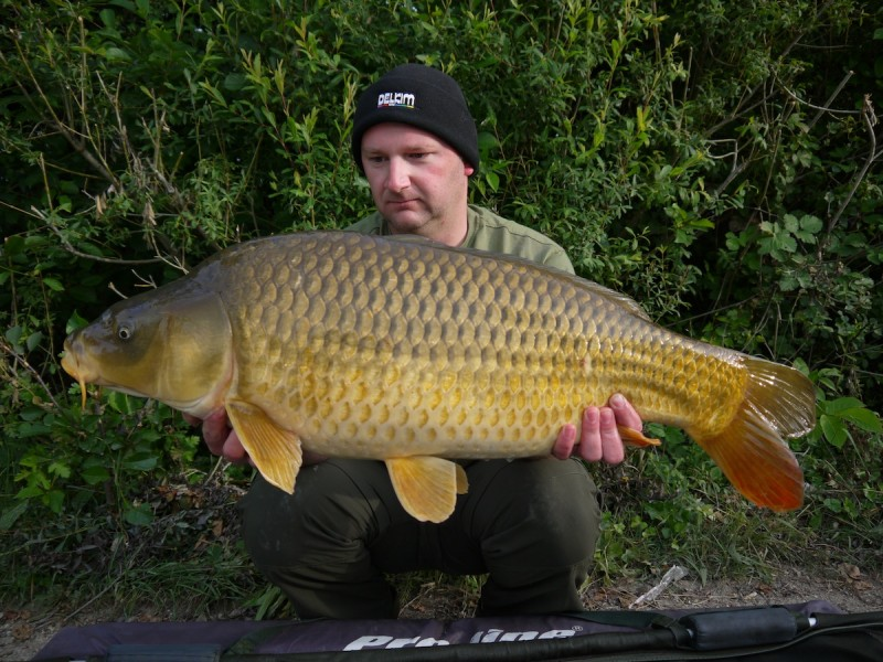 a nice mid 30lb common