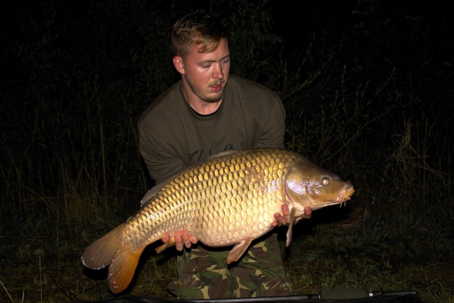 Ash with a 24lbs common