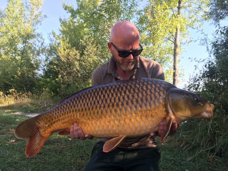 34lb 8oz Common from the Poo