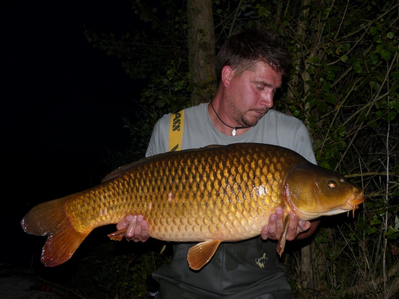 Adam Layzell with a 31lb Common from Bachelier's 29.7.17